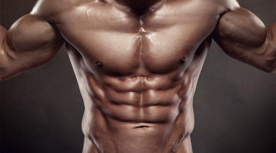 Les meilleurs exercices de musculation pour les abdos